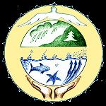 Qearthcare wittness logo